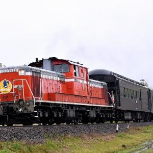 雨に濡れながら撮る、DD511043号機牽引の「DLやまぐち号」
