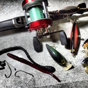 釣りに行けば何か見つけろ!