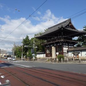 千代の古道から廣澤ノ池 コスモスめぐりポタリング
