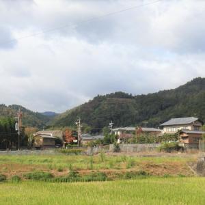 「嵯峨・鳥居本・嵐山」 紅葉めぐり