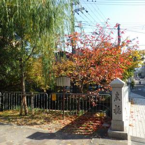 ご近所の紅葉めぐりポタ