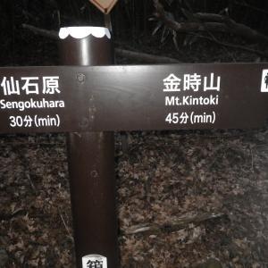 2/24、裏山トレーニング