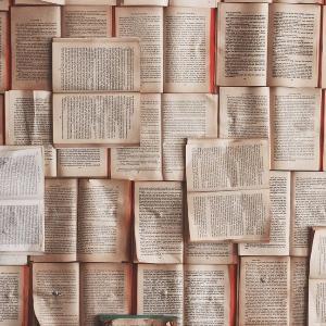 おすすめ本:『できる研究者の論文生産術:どうすれば「たくさん」書けるのか』