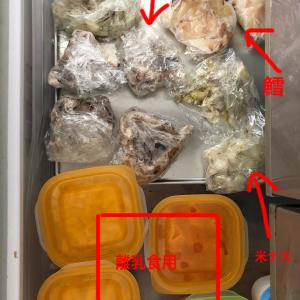 冷凍庫に作り置き
