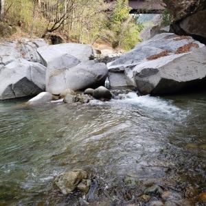 2020渓流 27回目釣行 笛吹川