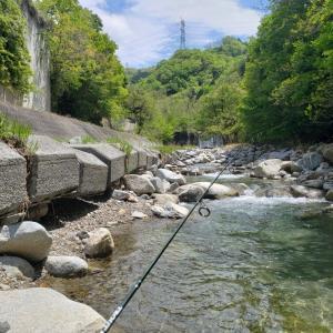 2020渓流ルアー釣り 2回目釣行 日川~笛吹川