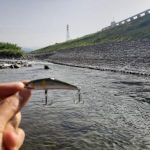 2020渓流ルアー釣り 4回目釣行 笛吹川