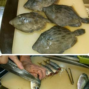 魚を求めて~☆