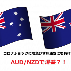 トライオートFXで運用開始したAUD/NZD(豪ドル/NZドル)で爆益?!