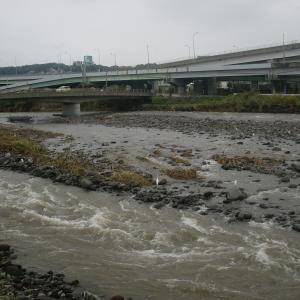 日本新記録??-箱根山24時間の降雨量900mm超え!!