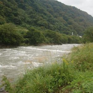 まだ水が高いが、川相の概要がみえてきた…!!