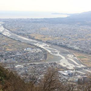 酒匂川を俯瞰する山で、春のきざし…!