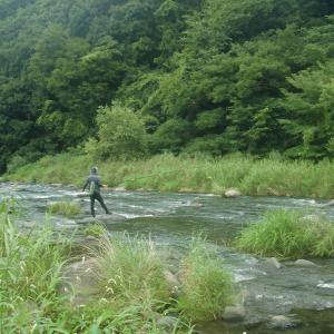 鮎友釣りで、竿を握るかにぎらないか…!?