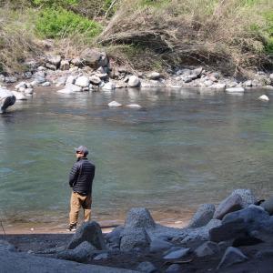 石色良いのに、魚影は見えずーのどかな河原で、家族でキャンプ…?!