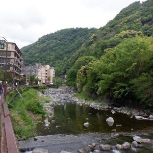 支流・須雲川の鮎など全滅!ー幸い本川に影響なし…!?
