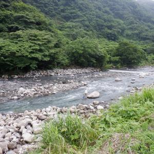 午前中は濁りも薄かったが、午後は本降りで濁り強くて釣りにならず…!!