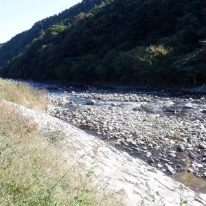 禁漁以来、久々に河原を歩く…!?