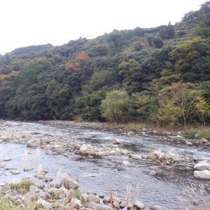 河原はますます秋深くなって…!!