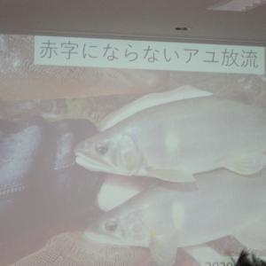 シンポジウムの続きー鮎の放流で漁協が赤字になる…!?