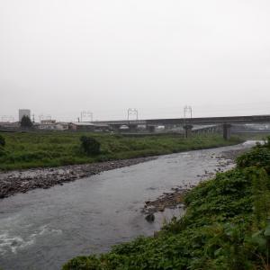 朝から本降り、午後濁りも入って、明日の釣りは微妙だ…!?