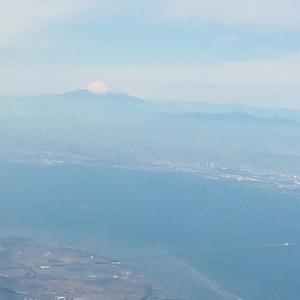 上京しました。