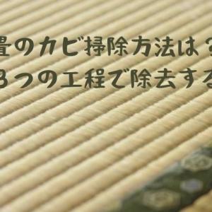 畳のカビ掃除方法は?簡単に3つの工程で除去する方法!