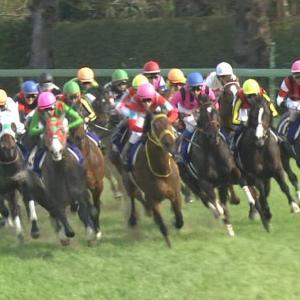 【競馬】モーリスの種牡馬成功を予見してたノーザンFが凄すぎる件