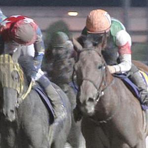 【競馬】クリソベリルほど強いのにここまで空気な馬を見たことないんだが