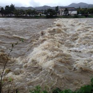 【多摩川堤防決壊動画】台風19号の多摩川氾濫に関する動画まとめ