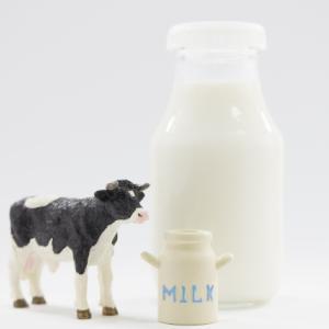 Molocow牛乳びんの通販や販売店はどこ?購入できるお店はある?