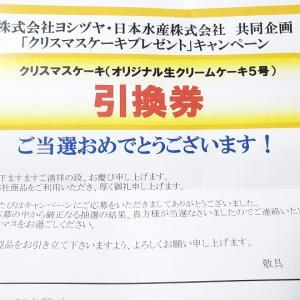 ヨシヅヤ(Yストア)×ニッスイ のクリスマスケーキのキャンペーン当選したよーー!!