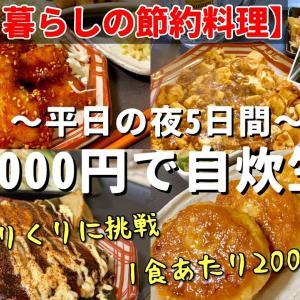 【一人暮らしの節約料理】平日5日間食費1000円生活 【1日目】自炊/晩酌/おつまみ