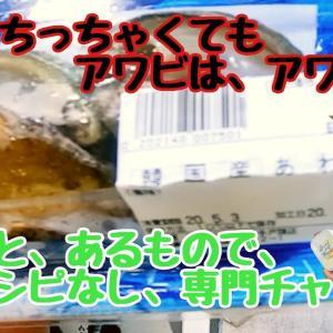 【ダイエットは食事から】豆腐ハンバーグで痩せよう|節約レシピ