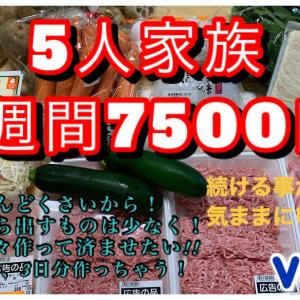 【使う食材は同じだけど色々な物を作って節約!】ついで料理vol.1