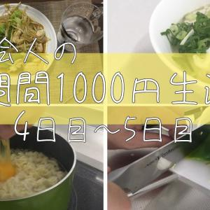 【節約飯】一人暮らし社会人による1週間1000円生活4、5日目【簡単節約料理レシピ】