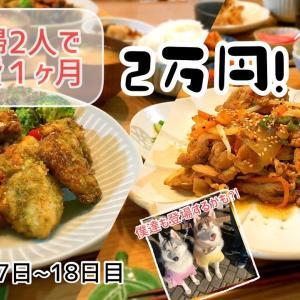 【節約料理】【簡単料理】【共働き夫婦】愛犬とまったり晩ごはん♪安い・早い・美味しいを目指して〜