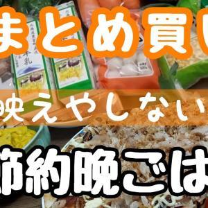 【料理Vlog】節約!おケチ主婦の節約晩ごはんとまとめ買い出し!晩ごはんは映えなくていい!