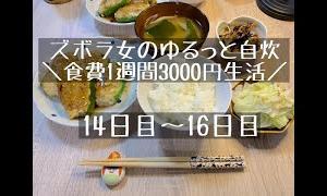 【節約料理】ズボラ女が挑む1週間3,000円生活vol.12【同棲】14日目〜16日目
