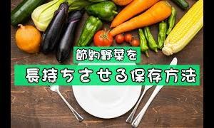 【節約】野菜のまとめ買いを諦めたくない方へ。野菜の保存方法紹介します。