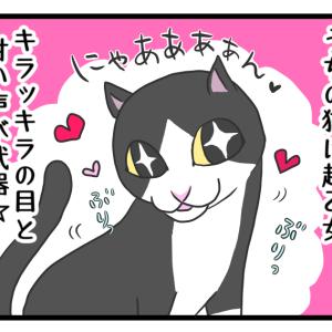 可愛い猫にもトゲがあるのよ…