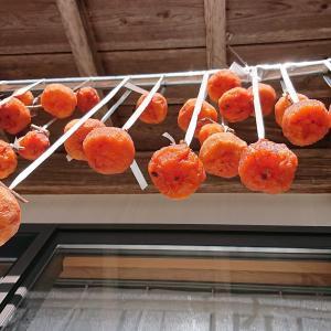 つるし柿が順調に乾いてきました‼️