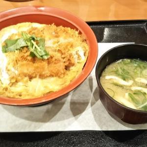 今池(千種区)_ごはん処 かつ庵 #かつ丼(2020年2月の平日のディナー)