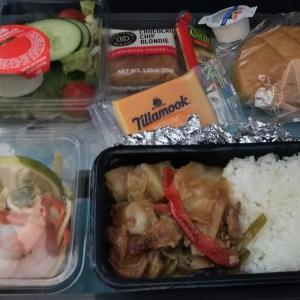 フロリダ WDW旅行記(2019年10月)~デトロイトからセントレア デルタ航空の機内食~