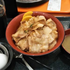 矢田南(東区)_極旨屋(イオンナゴヤドーム前店) #豚丼(2021年4月の土曜日ディナー)
