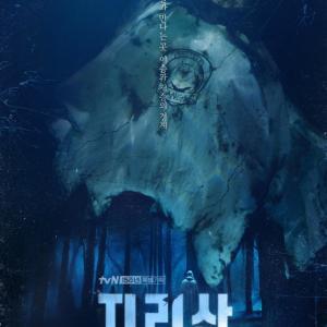 チョン・ジヒョン&チュ・ジフン、新ドラマ「智異山」…ミステリーポスター公開