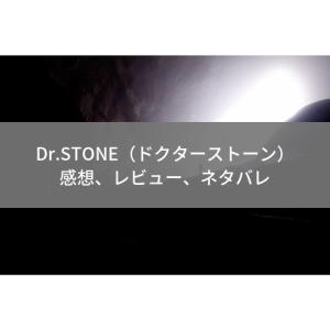 【Dr.STONE 第11話 感想】スイカの目と職人の意地【アニメ個人的レビュー】