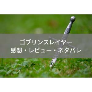 【ゴブリンスレイヤー 第12話 感想】ゴブリンスレイヤーの素顔とは【アニメレビュー&無料視聴!】