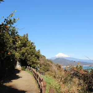 薩埵峠:静岡・清水市(5回目)