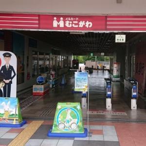 阪神電鉄 赤胴電車 at 武庫川団地(2回目)