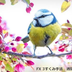 【重要】FX 3すくみ手法-週間スワップ情報(12月17日~20日)